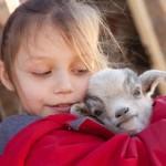 Der Kindergeburtstag im Tierpark