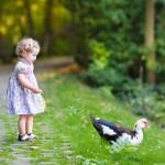 Einen Kindergeburtstag in der Natur feiern