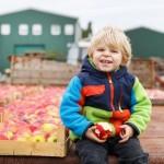 Ein unvergesslicher Kindergeburtstag auf dem Bauernhof