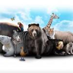 Den Kindergeburtstag im Zoo feiern