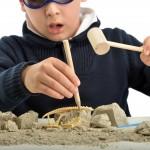 Den Kindergeburtstag im Naturkundemuseum feiern und lernen