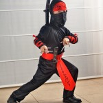 Kindergeburtstag Ninjago